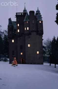 Scottish Castle with Christmas Tree