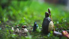 I Enjoy The Art Of Toy Photography Ich genieße die Kunst der Spielzeugfotografie Gelangweilter Panda Figure Photography, Toys Photography, Just You And Me, Tokyo Otaku Mode, My Neighbor Totoro, Bored Panda, Worlds Of Fun, Ghibli, Garden Sculpture