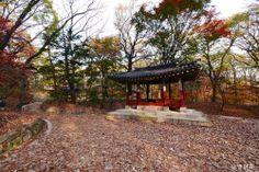 창덕궁[Changdeokgung Palace Complex] - 옥류천 취한정