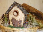 little fairy house Diorama, Polymer Clay, Fairy, Outdoor Decor, House, Home Decor, Elves, Decoration Home, Home