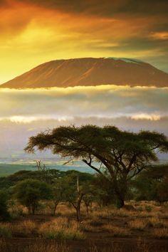 Spectacular view of Mount Kilimanjaro from Amboseli in Kenya #Africa #Kenya