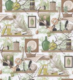 Academia (3071/02) - Manuel Canovas Wallpapers - An amazing shelf design, with horizontal wood shelves covered in Victoriana style collectables and miscellania on a large scale, with a classic pastoral style toile behind. Shown in the green and brown colourway. Please request sample for true colour match. Wide width product.