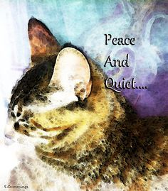 Cat Art - Peace And Quiet Painting by Sharon Cummings - Cat Art - Peace And Quiet Fine Art Prints and Posters for Sale