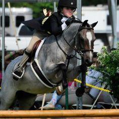 Pony class