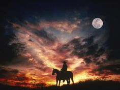 Silhouette of Cowboy on Horse, Photographic Print, art.com.