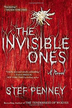 The Invisible Ones by Stef Penney http://www.amazon.com/dp/042525321X/ref=cm_sw_r_pi_dp_X17pwb1BACCWN