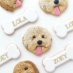 Dog Cookies, Cute Cookies, Cookies Et Biscuits, Spice Cookies, Sugar Cookies, Dog Cupcakes, Dog Bakery, Doodle Dog, Puppy Birthday