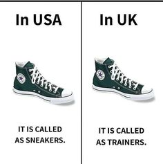 English Mastiff, Daily Facts, Fun Facts, Bag Rack, Mobile Photography, Chuck Taylor Sneakers, Learn English, Trainers, High Top Sneakers