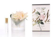 Boxed Real Touch Rose in Pink Blush $30