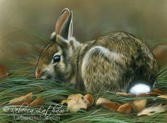 rabbit, 8in x 10in, opaque and transparent watercolor with sterling silver on board, ©Rebecca Latham