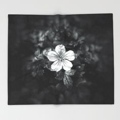 Minimalistic black and white flower petal Throw blanket by #PLdesign #flowers #blackandwhite #FlowerGift