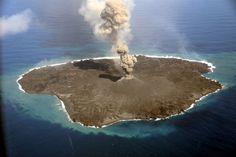 Ένα μικρό νησί που γεννήθηκε από ηφαιστειακές εκρήξεις νότια του Τόκιο δίνει μια μοναδική ευκαιρία στους οικολόγους να παρακολουθήσουν από κοντά τον αποικισμό αυτής της άγονης νέας γης.