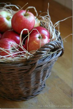 The Old Painted Cottage - antique European apple gathering basket