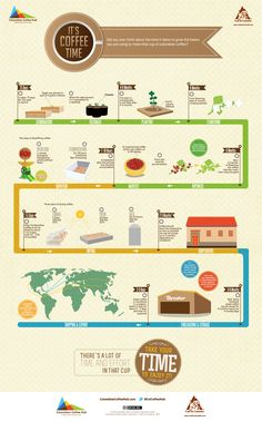 From bean to the cup. #coffee #infographic #infographics