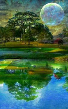 Natural Reflection......