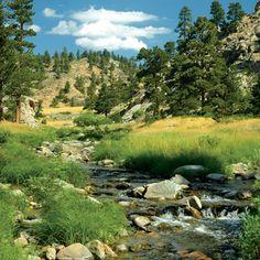 Johnson Sheep Mountain Ranch - Wyoming