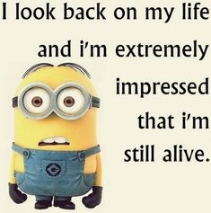 Top 35 Funniest Minions memes                                                                                                                                                      More