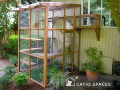 Thinking of building a catio for your cat? Check out these beautiful examples of outdoor cat enclosures designed by Cynthia Chomos of Catio Spaces in Seattle! Diy Cat Enclosure, Outdoor Cat Enclosure, Reptile Enclosure, Diy Cat Tree, Cat Cages, Cat Window, Window Wall, Outdoor Cats, Cat House Outdoor