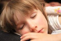 Científicos tratan de averiguar si el ambiente visual y el sueño pueden modificar la corteza visual y, en consecuencia, su comportamiento visual.