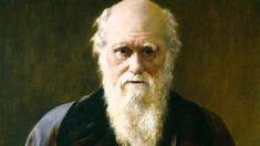 "The invalidity of the claim that ""moral understanding exists from birth, you cannot ignore an actively existing concept"" - Darwinism Watch Charles Darwin, Lectures, Morals, Atheist, Book Lovers, Evolution, Literature, Celebrities, Books"