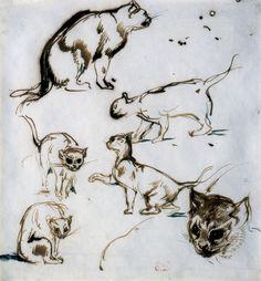 Eugène Delacroix, Six études de chats, encre brune sur papier vélin, 18,8 cm x 18 cm. Collection Senn, musée d'art moderne André Malraux, MuMa Le Havre © MuMa Le Havre / Florian Kleinefenn.