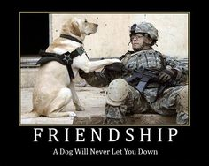 Friendship: A dog will never let you down.