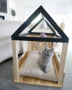 Tutorial Make an lovable mattress to your cat Animal Gato, Cat Bedroom, Post Animal, Pet Furniture, Diy Stuffed Animals, Pet Accessories, Cat Life, Cat Toys, Animals And Pets