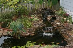 This is just an example of how you can maybe layout your own backyard pond.  Notice the stones, waterfall, plants, and fish. DIY instructions on Backyard-Pond-Guide.com