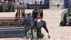 """Inescapable is available! """"Mars"""" is a hunter and derby horse. Horses Jumping Videos, Horse Videos, Show Horses, Equestrian Boots, Equestrian Outfits, Equestrian Style, Derby Horse, English Riding, Horses For Sale"""