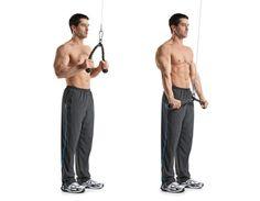 8-rope-tricep-pressdowns.jpg