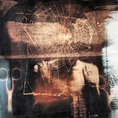 finished #solarfast print combining negatives and photogram objects etc.