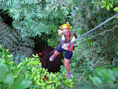 Jungle Adventure in Langkawi Island New Zealand Travel, Money Saving Tips, Travel Around, Travel Tips, Island, Adventure, Travel Advice, Islands, Adventure Movies