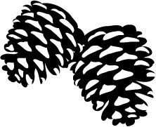 5203E - large pine cones stamp- maybe for homemade christmas cards??