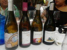 Colección de vinos de la D.O. Sierra de Salamanca
