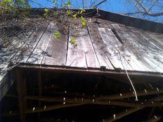 Peak of My Old Kentucky Barn
