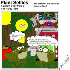 When two worlds collide. Plant Cartoon, Hardy Plants, Second World, Daddy, Comics, Pictures, Fictional Characters, Photos, Cartoons