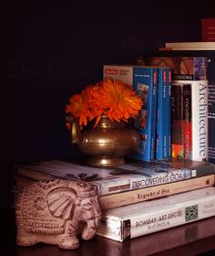 Bookshelf vignettes