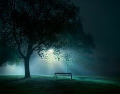 a l o n e by Mikko Lagerstedt, via Behance