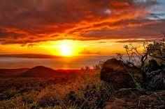 Maui Explosion