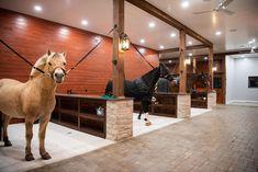 Dream Stables, Dream Barn, Luxury Horse Barns, Horse Barn Plans, Horse Barn Decor, Equestrian Stables, Horse Barn Designs, Horse Ranch, Horse Stalls