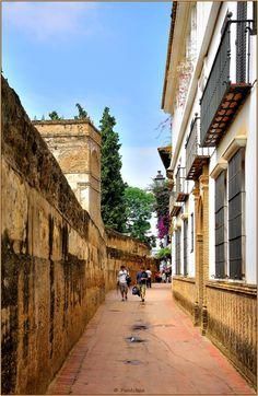 Calle del Agua en el barrio de Santa Cruz. Sevilla, Andalucía. España