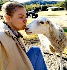 Sharing a kiss with one of our touch farm sheep. Riverside Resort, Sheep Farm, Kiss, Touch, Fun, Animals, Fin Fun, Animales, Animaux