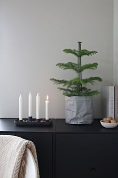 First day of Advent
