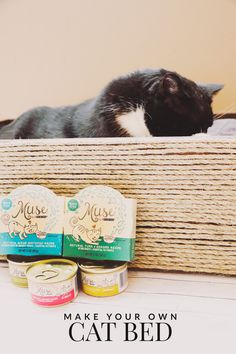 For less than $10, you can create this purrrfect DIY cat bed for your feline friend. [ad] #MyCatMyMuse @MuseCatFood @Petsmart