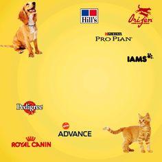 Nahrung und Accessoires für dein Haustier