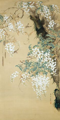 Taki Katei(文政13(1830)-明治34(1901) Bird and Wisteria (950×1894)