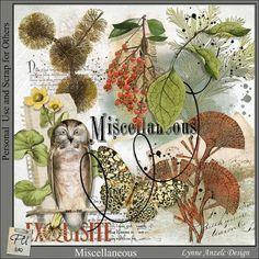 Digital Art :: Kits :: Miscellaneous