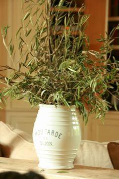 vignette design: The Olive Branch