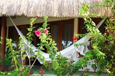 There are hammocks provided for you. Important  for a relaxing time in Parajuru, Brazil. Experience it yourself!
