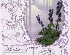 HAZEL CELTIC SACRED Tree Digital Download by MorganaMagickSpell